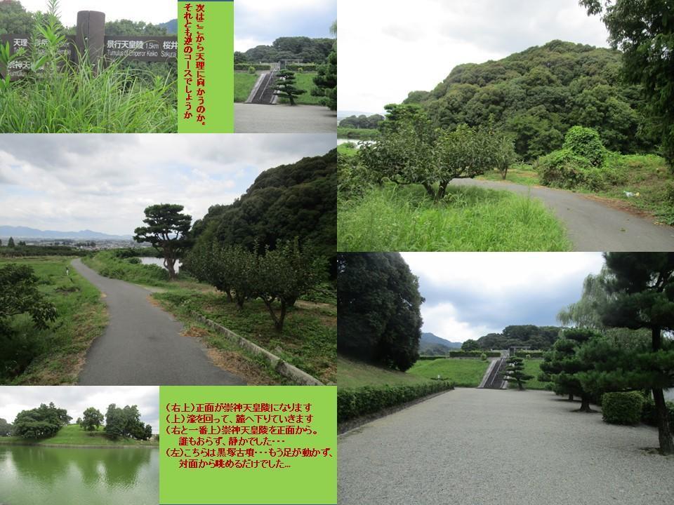 f:id:genta-san:20200809010543j:plain
