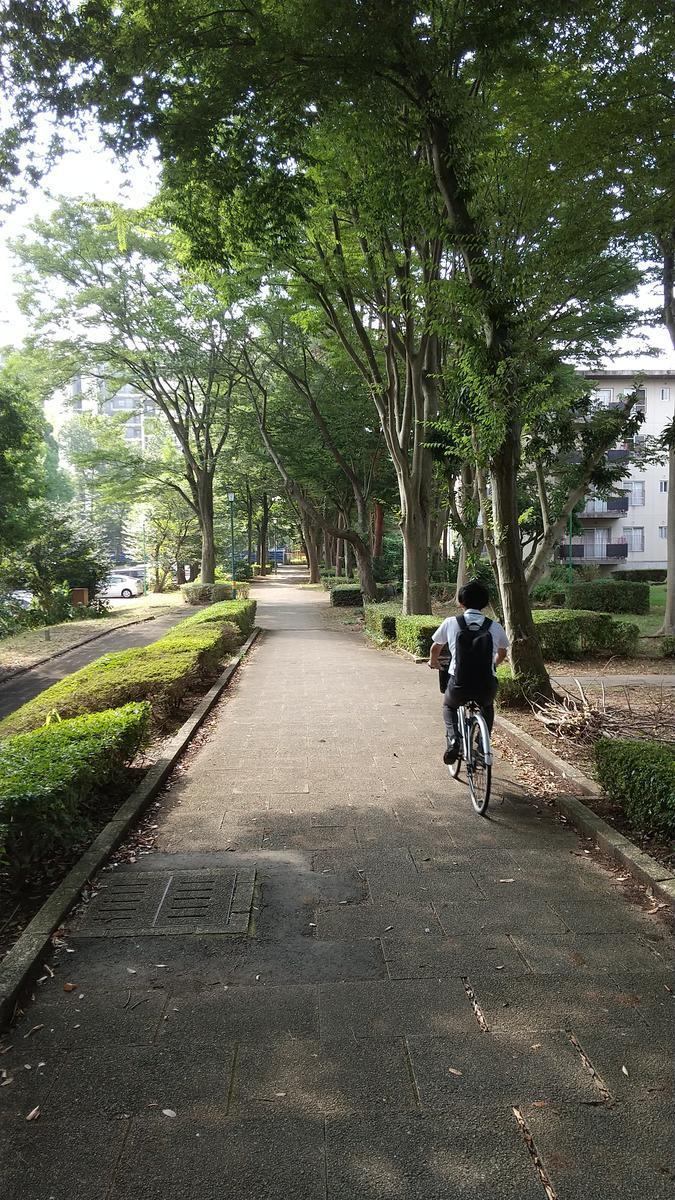 f:id:genta-san:20200817114448j:plain
