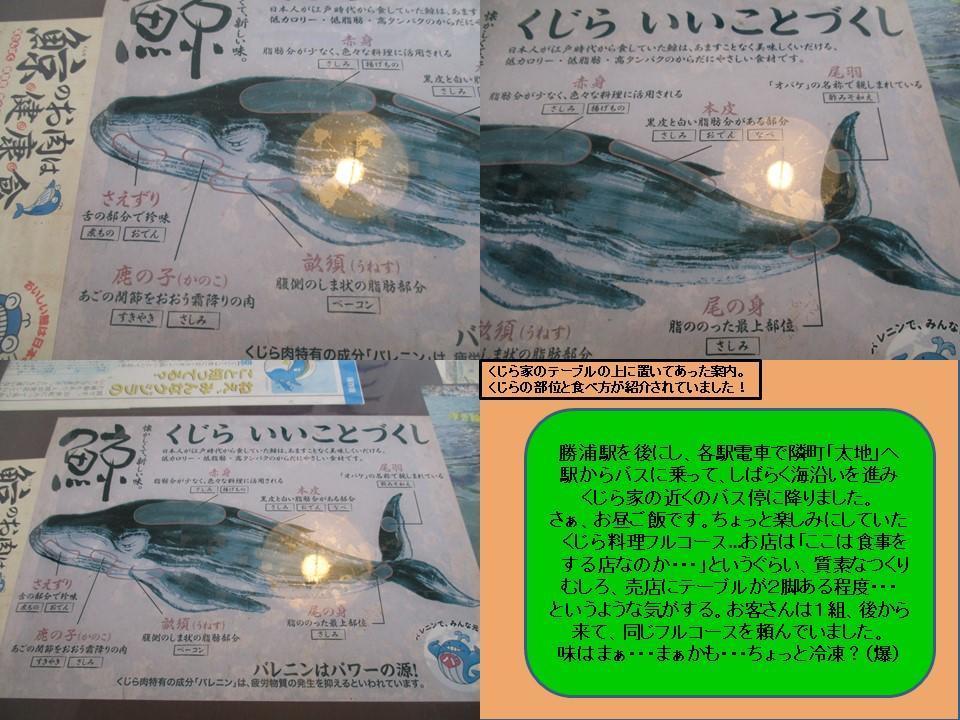 f:id:genta-san:20200824143322j:plain