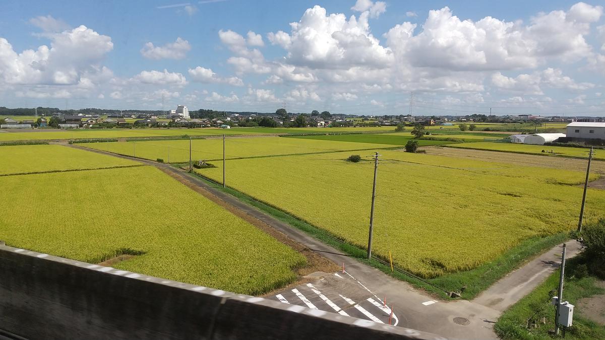 f:id:genta-san:20200828172626j:plain