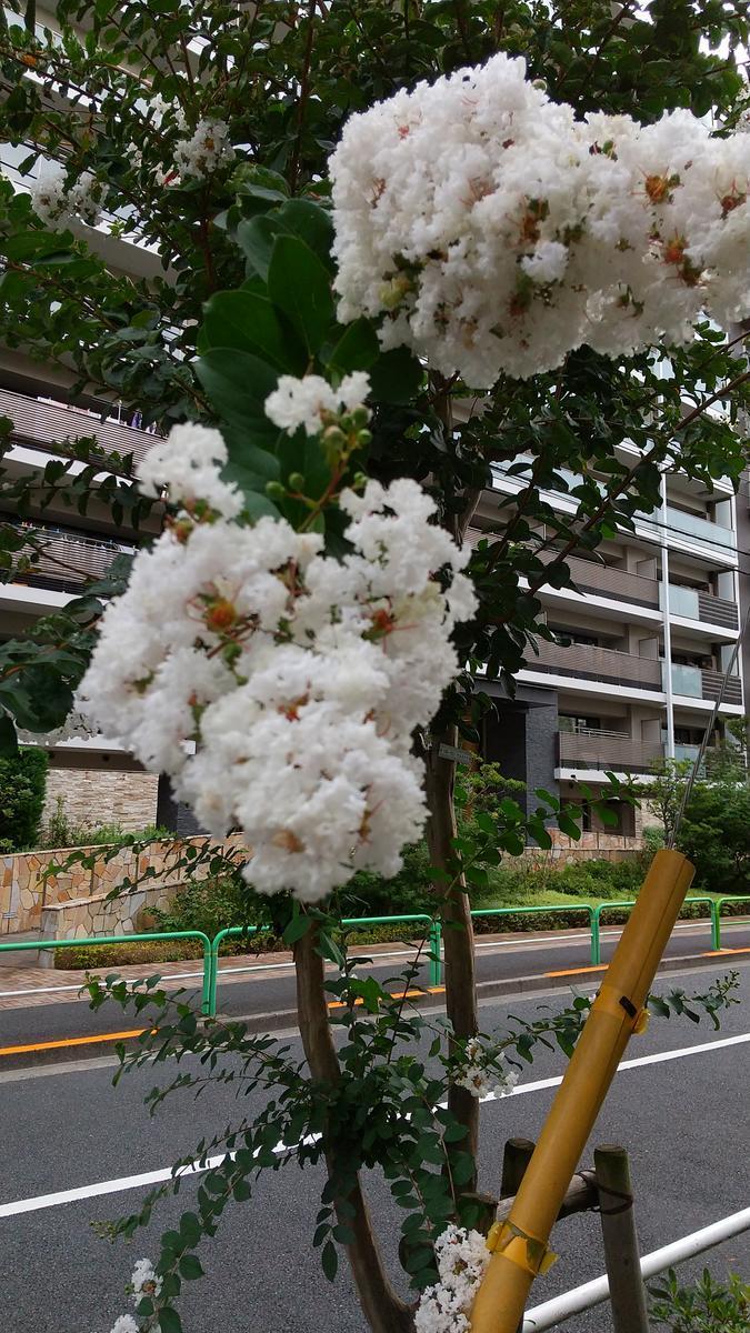 f:id:genta-san:20200915193945j:plain