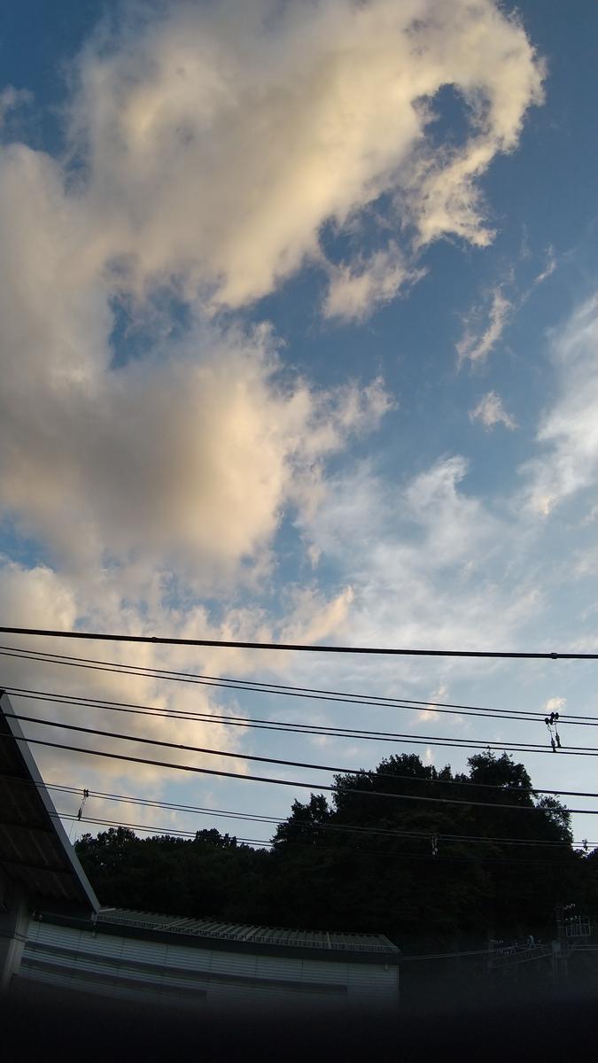f:id:genta-san:20201021164554j:plain