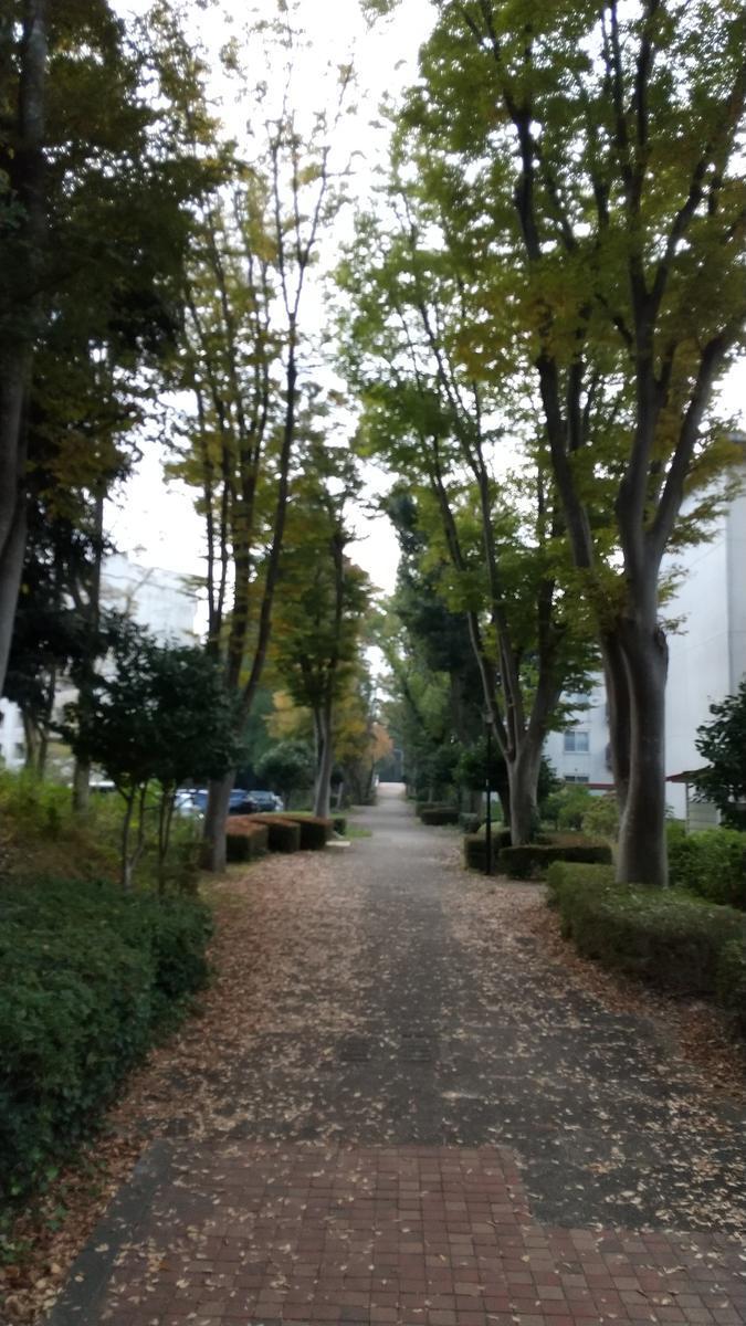 f:id:genta-san:20201102181347j:plain