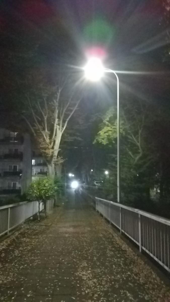 f:id:genta-san:20201113180940j:plain