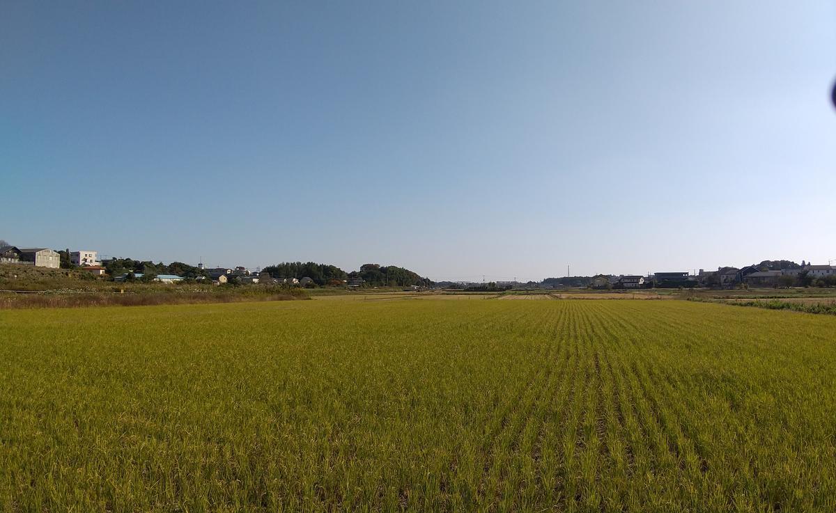 f:id:genta-san:20201113181014j:plain