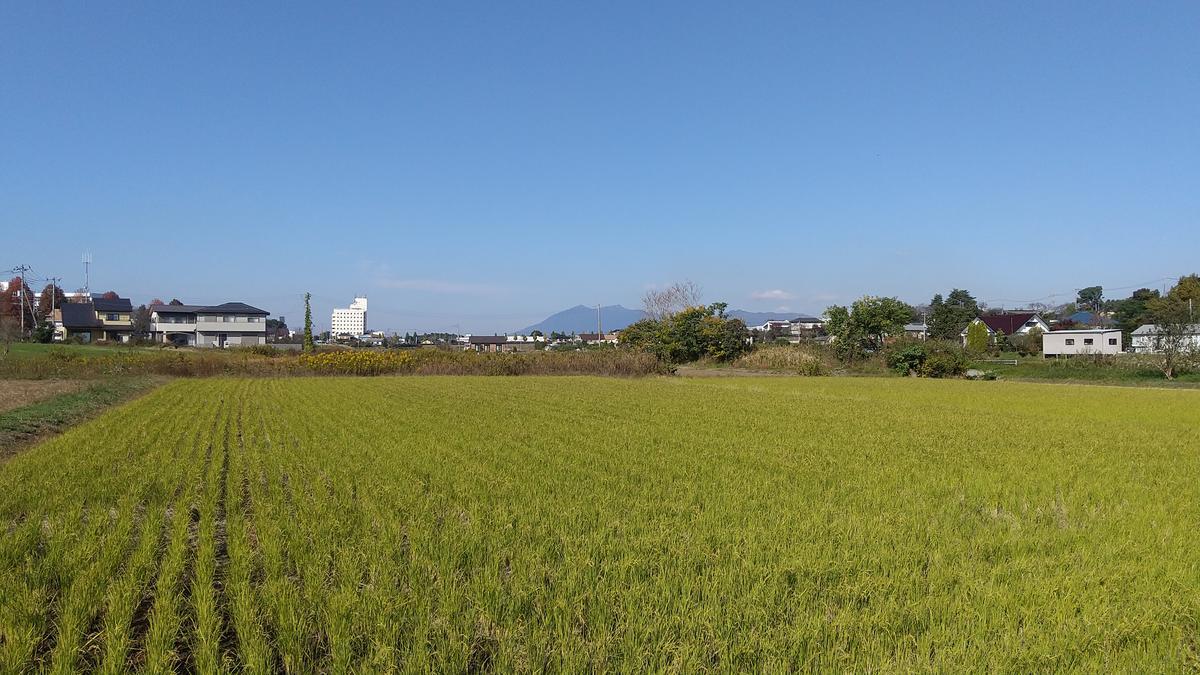 f:id:genta-san:20201113181236j:plain