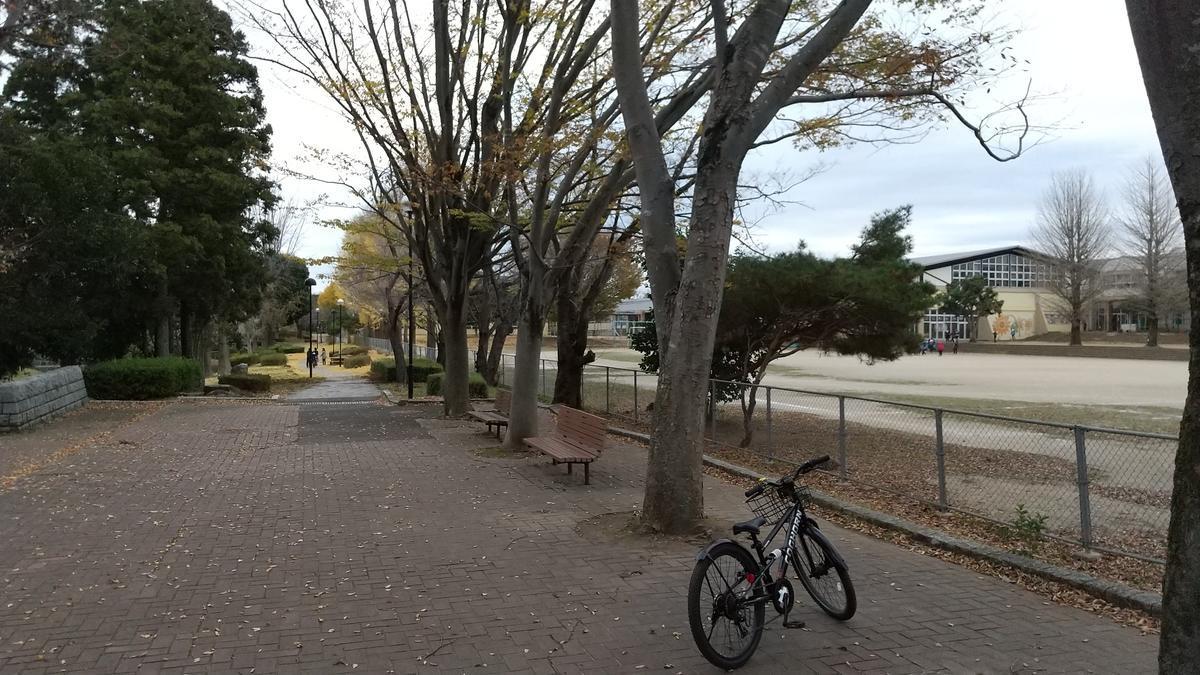 f:id:genta-san:20201124182044j:plain