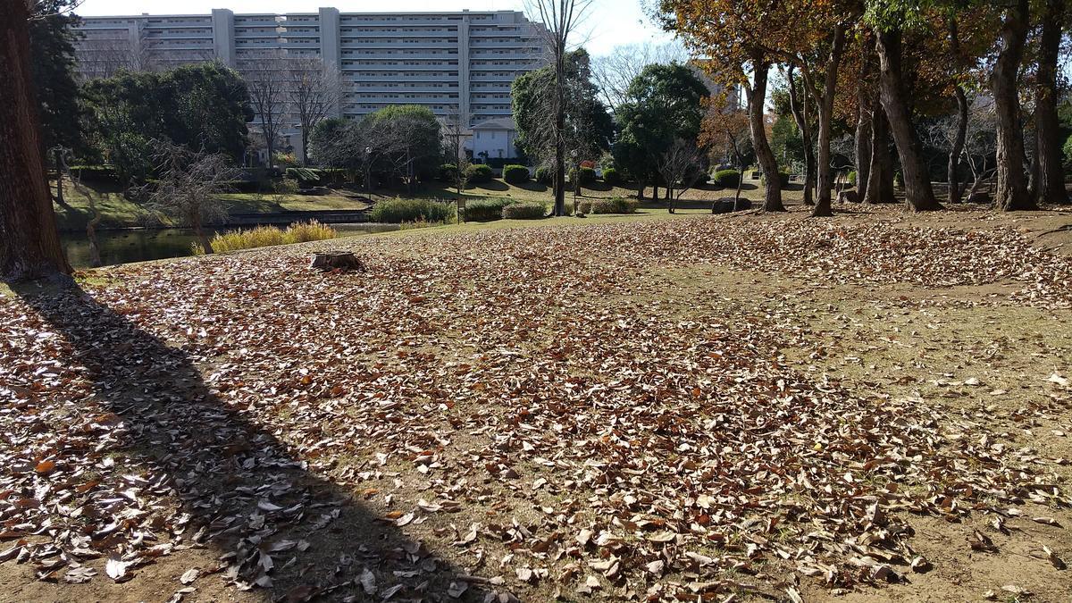 f:id:genta-san:20201201180929j:plain