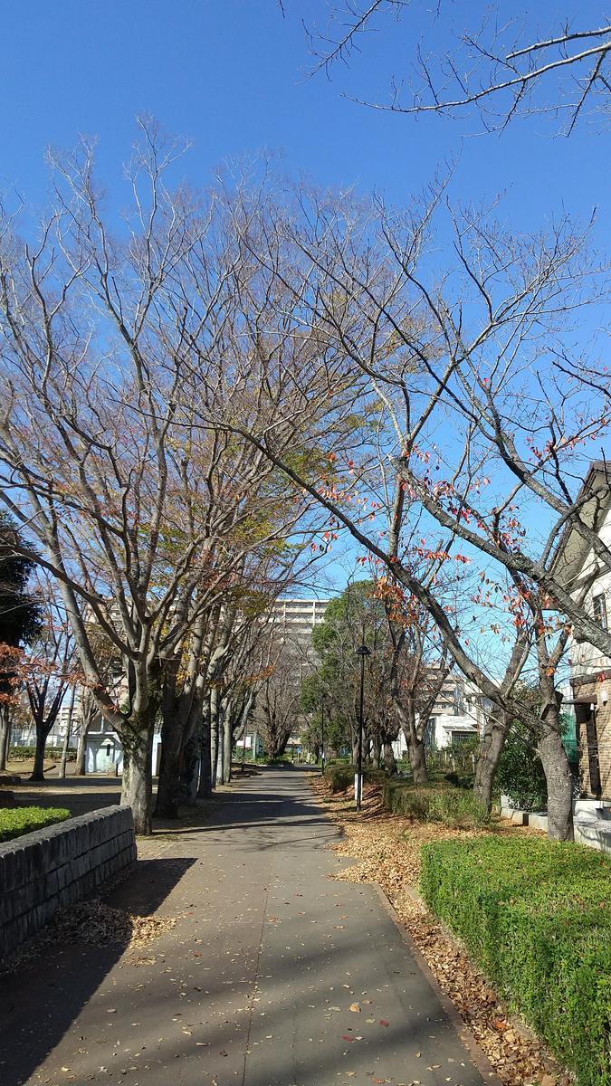 f:id:genta-san:20201201181033j:plain