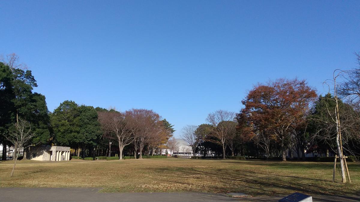 f:id:genta-san:20201201181221j:plain