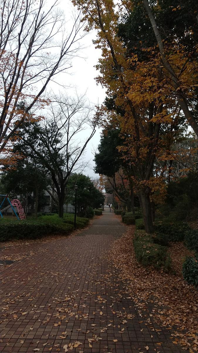 f:id:genta-san:20201210175316j:plain
