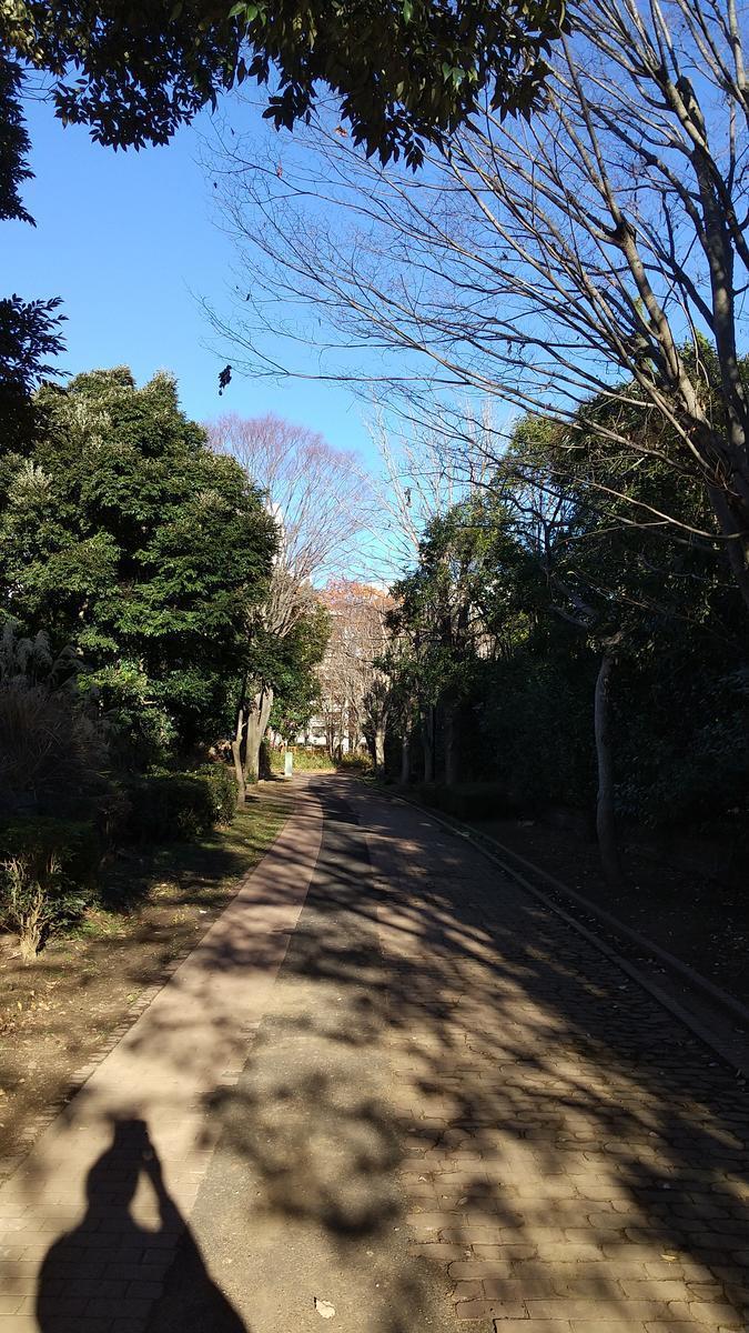 f:id:genta-san:20201216174326j:plain