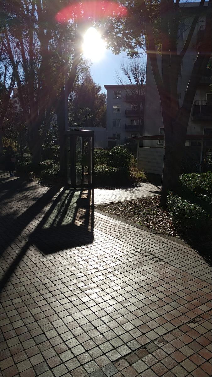 f:id:genta-san:20201216174727j:plain