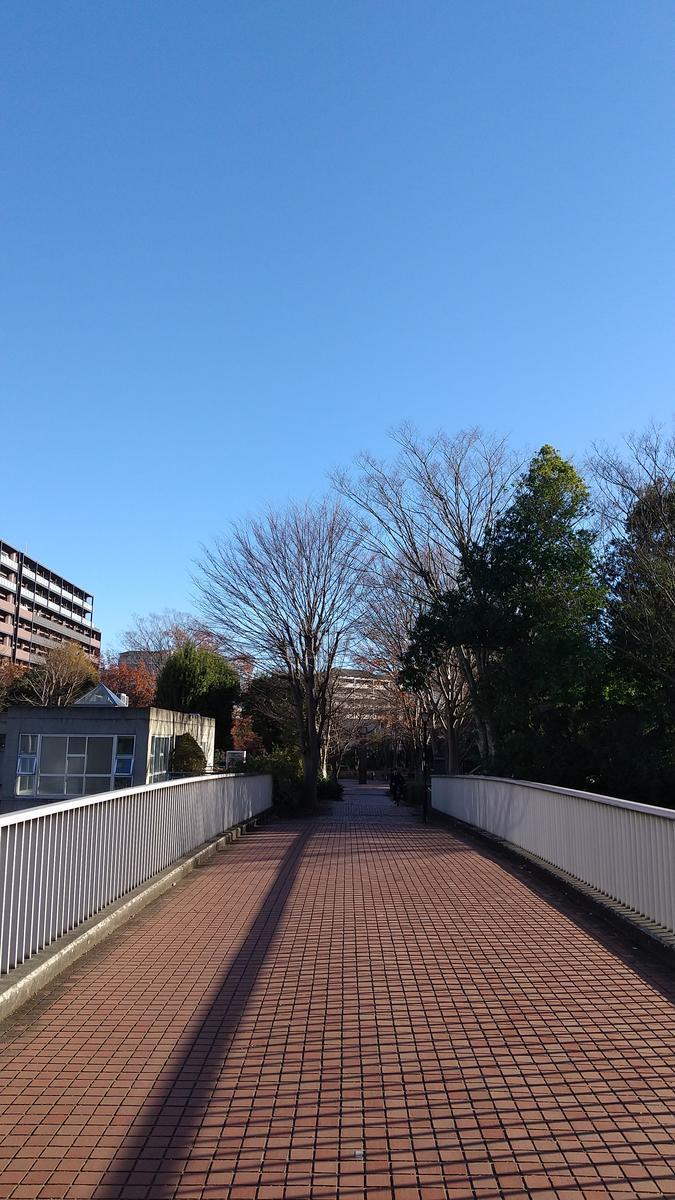 f:id:genta-san:20201216174748j:plain