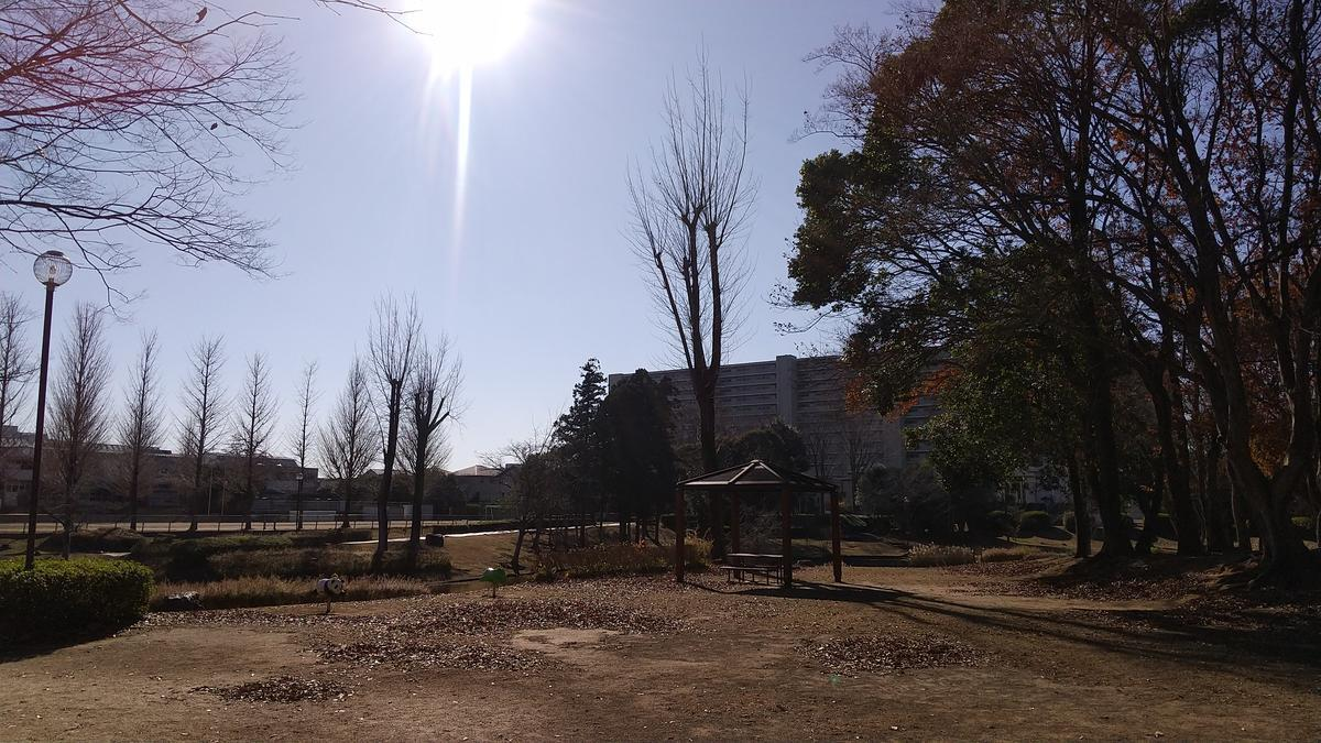 f:id:genta-san:20201221181043j:plain