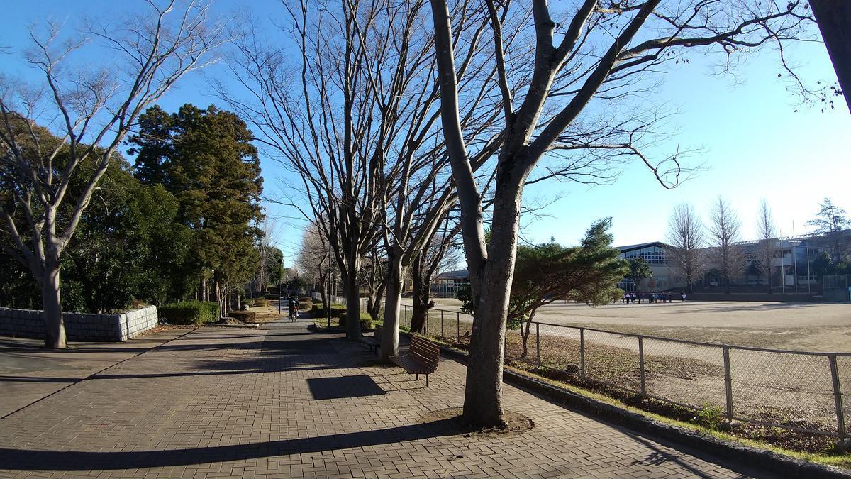 f:id:genta-san:20201221181141j:plain