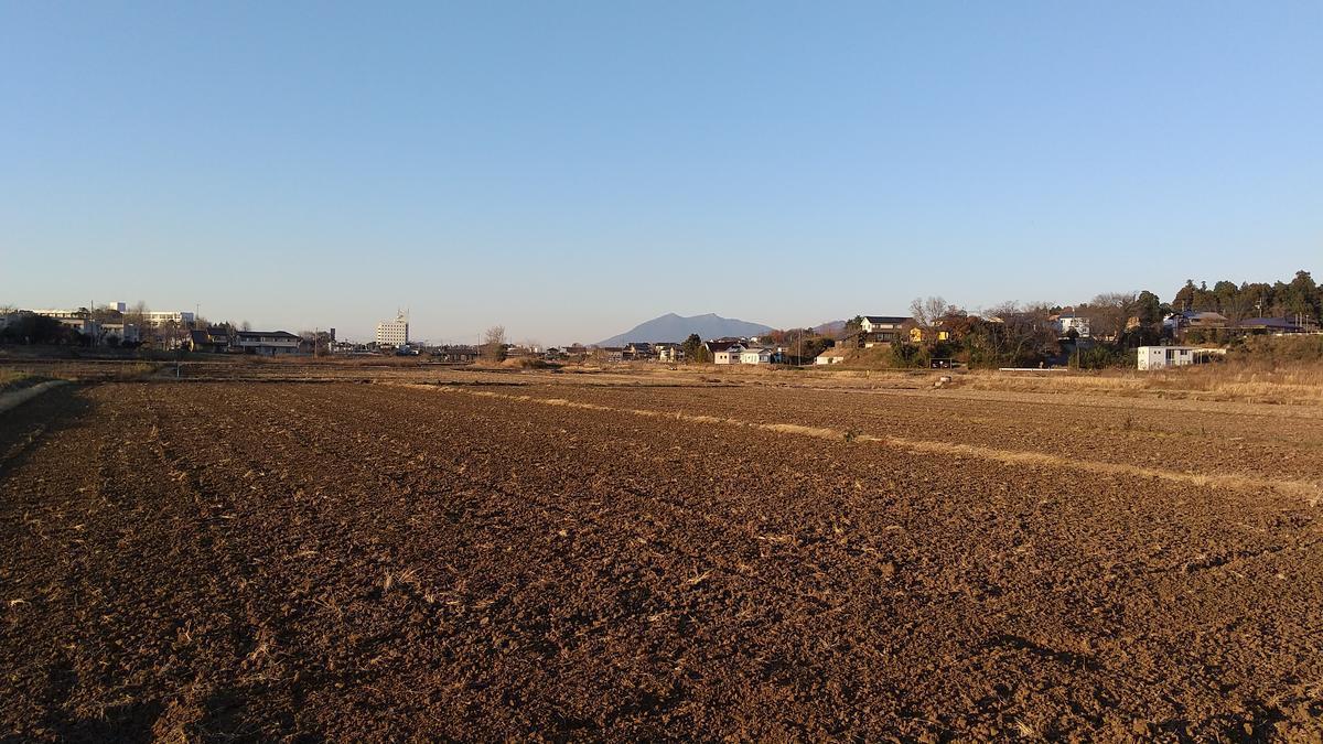 f:id:genta-san:20201222180935j:plain
