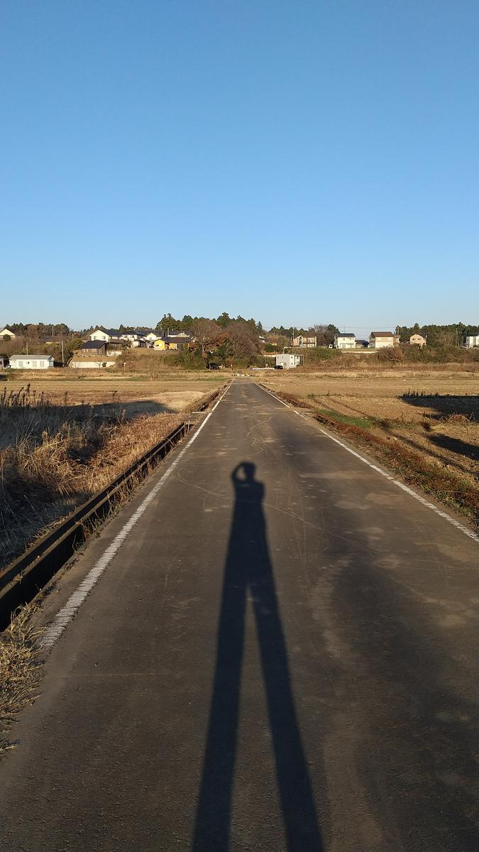 f:id:genta-san:20201222181052j:plain