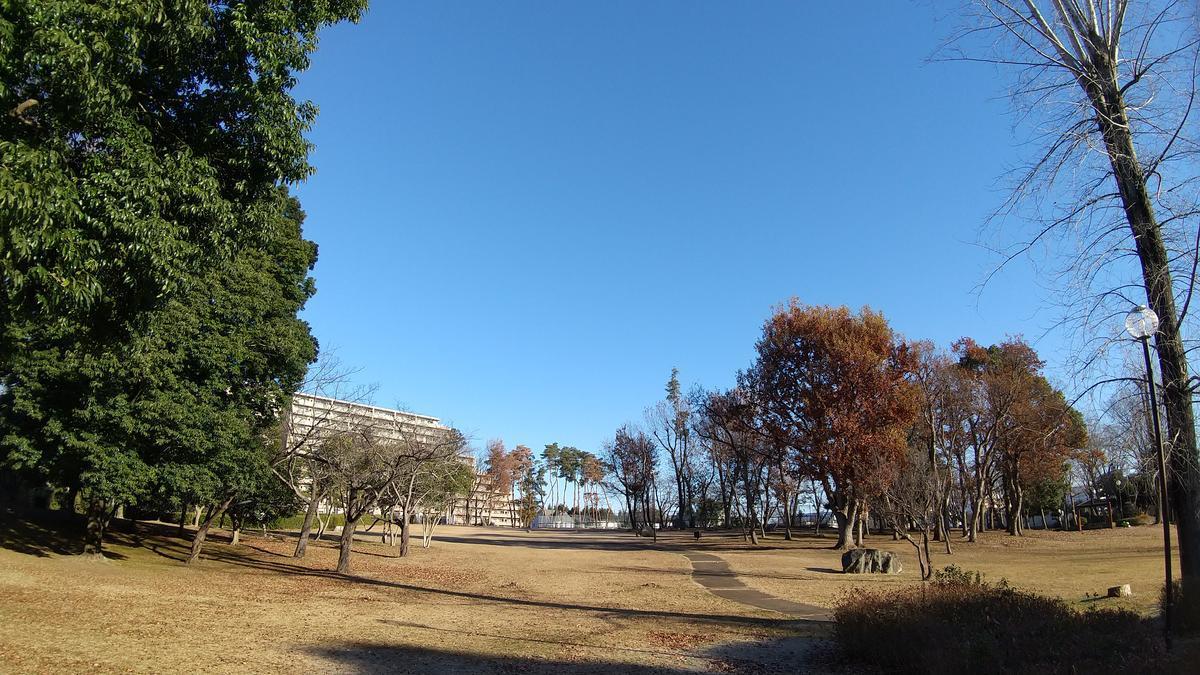 f:id:genta-san:20201222181228j:plain