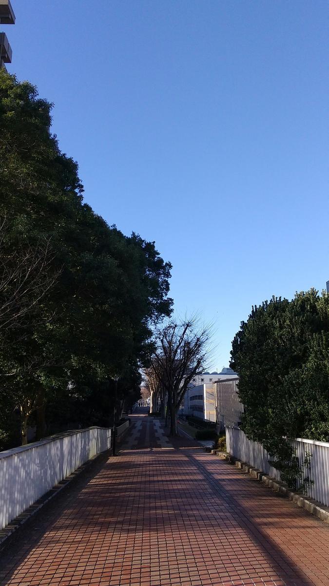 f:id:genta-san:20201222181425j:plain