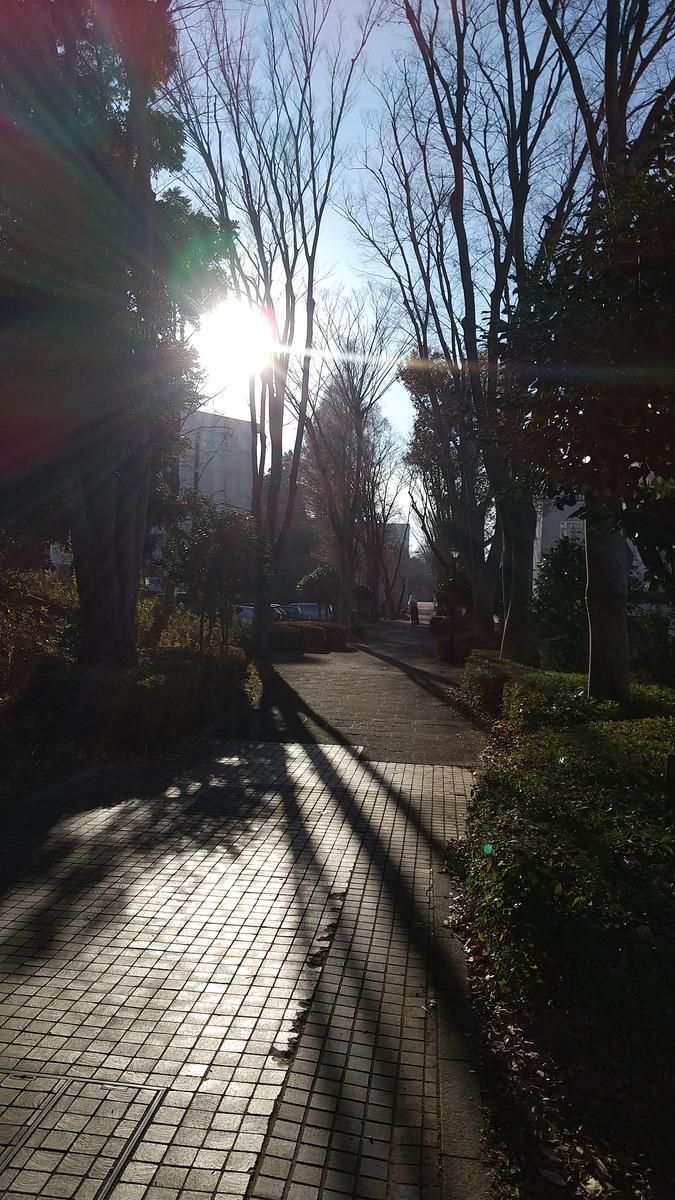 f:id:genta-san:20201224174738j:plain