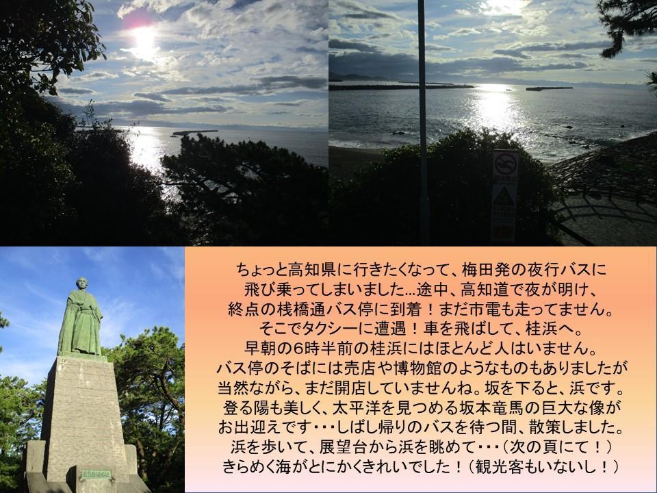 f:id:genta-san:20210113113939j:plain