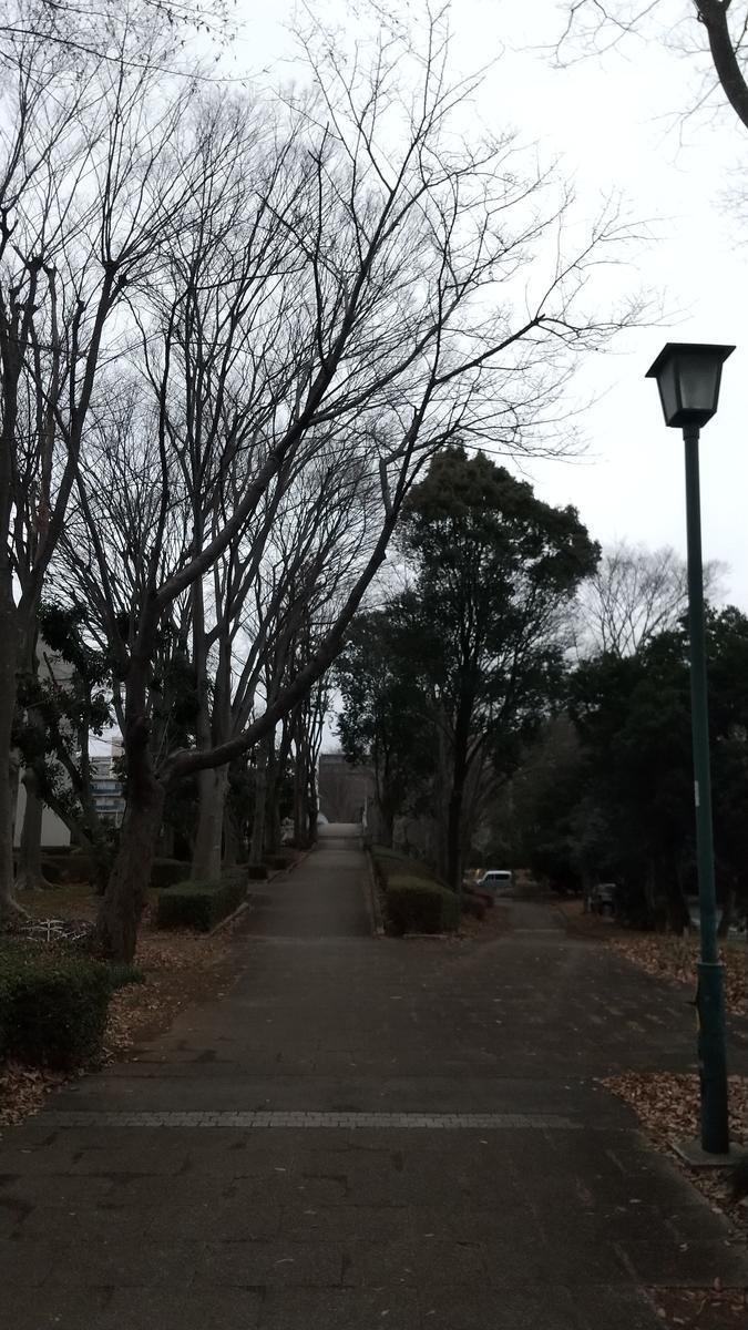 f:id:genta-san:20210115181034j:plain