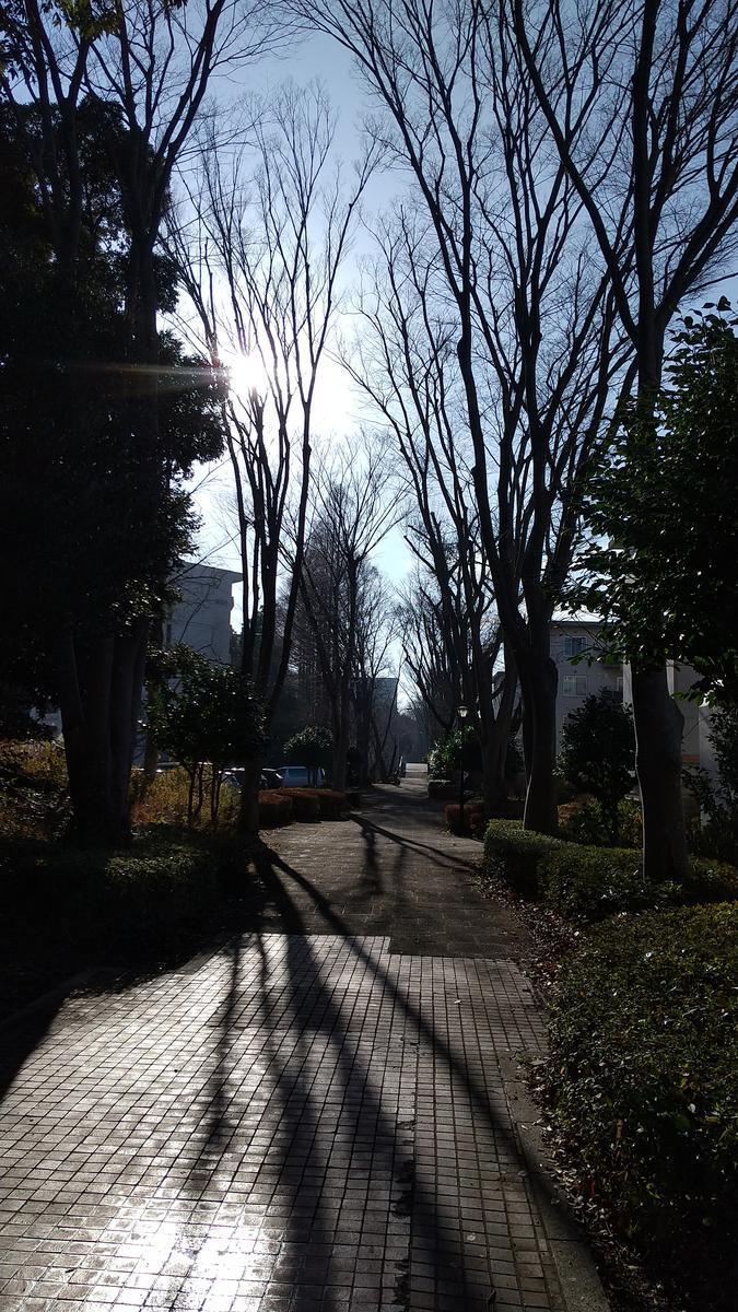 f:id:genta-san:20210125150203j:plain