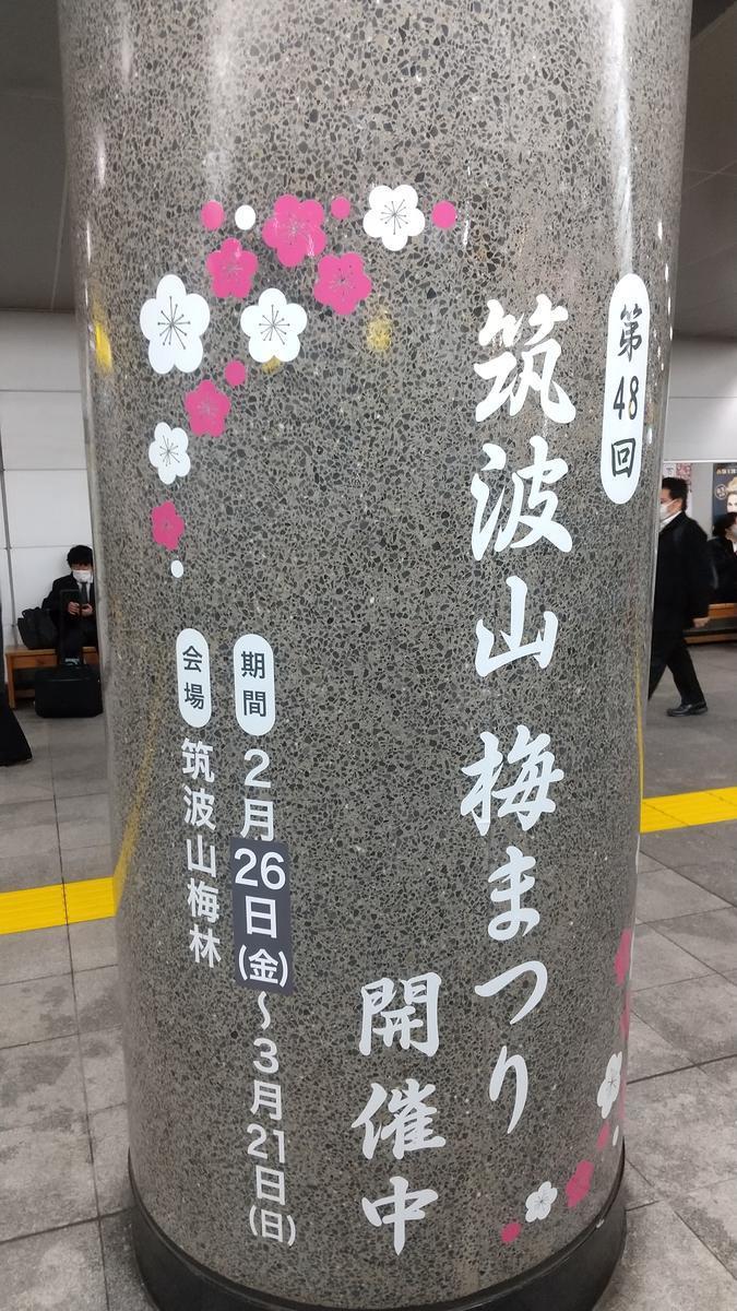 f:id:genta-san:20210302174058j:plain
