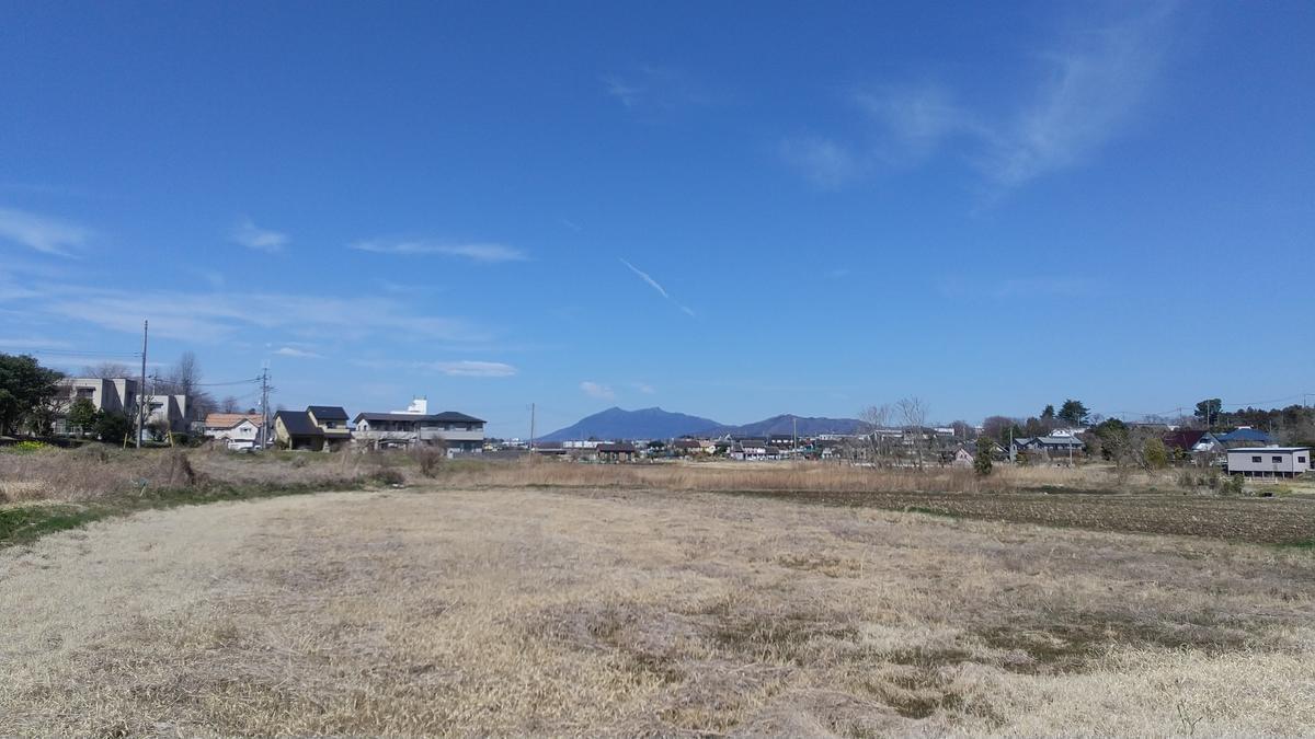 f:id:genta-san:20210315132248j:plain