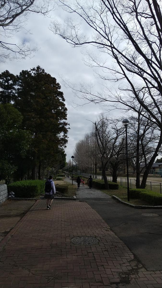 f:id:genta-san:20210315132437j:plain