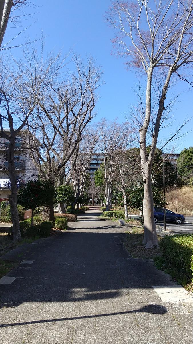 f:id:genta-san:20210315180136j:plain