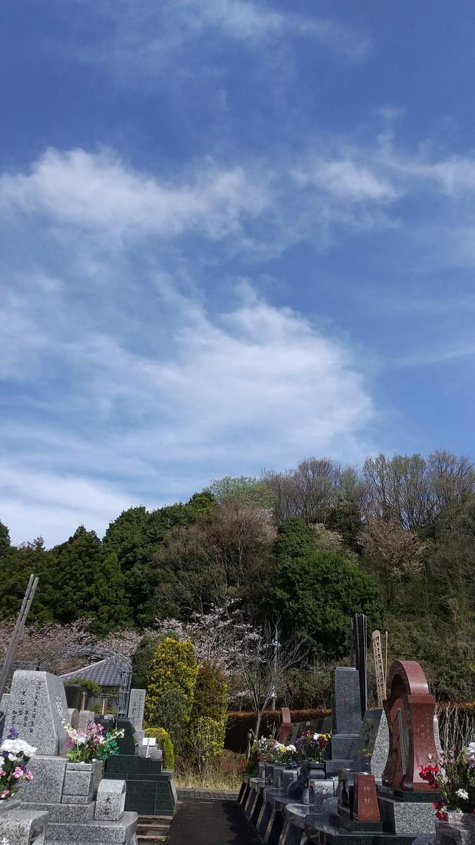 f:id:genta-san:20210329133137j:plain