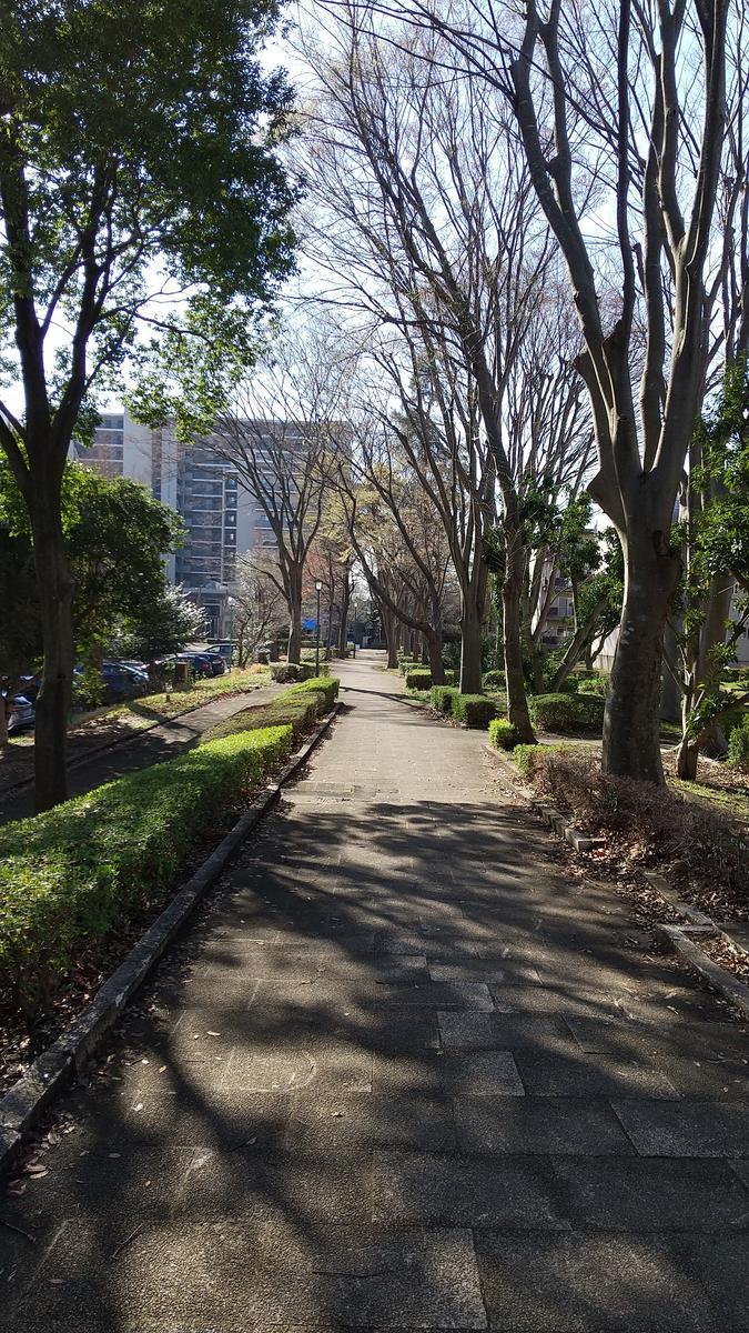 f:id:genta-san:20210330181540j:plain