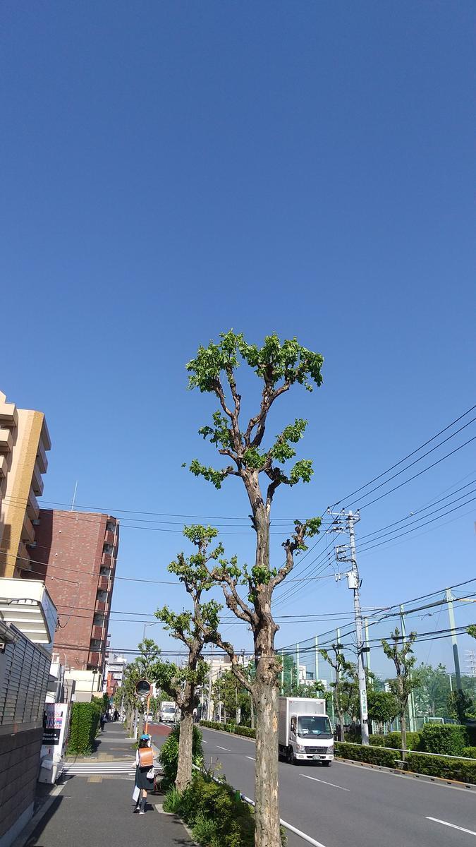 f:id:genta-san:20210423181005j:plain