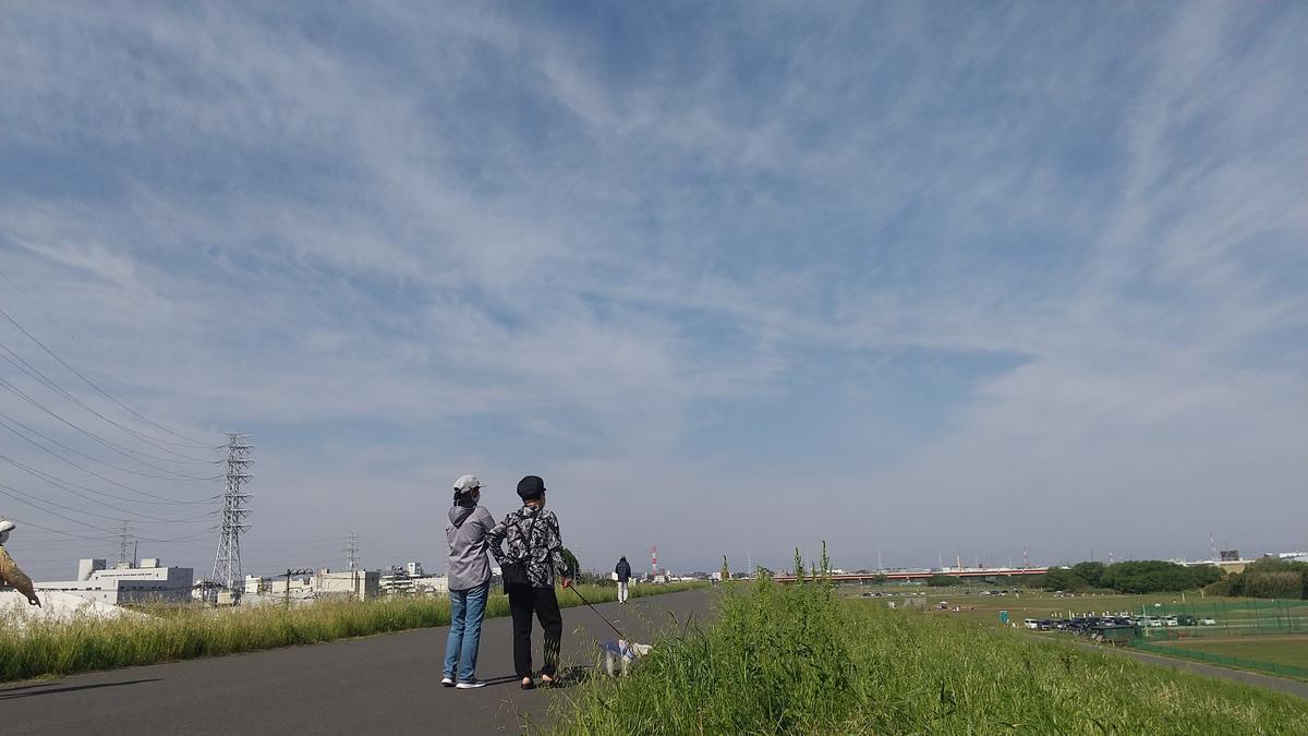 f:id:genta-san:20210424083343j:plain