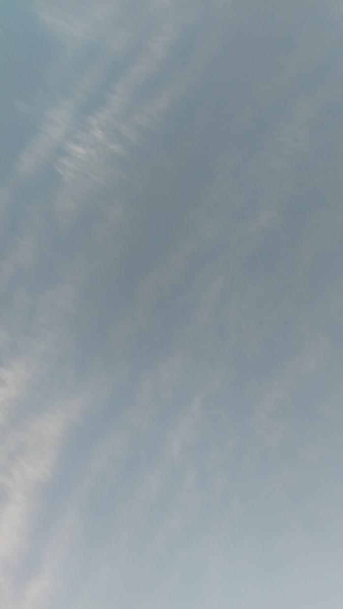 f:id:genta-san:20210506184538j:plain