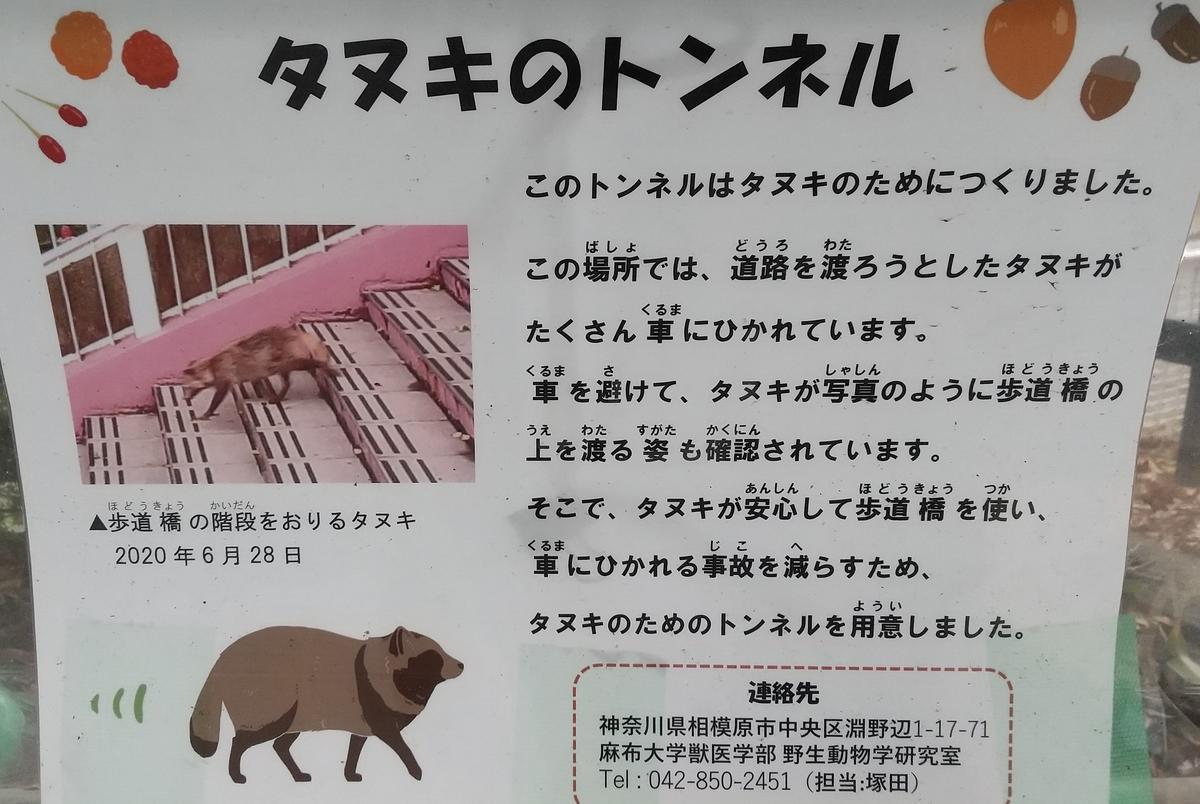 f:id:genta-san:20210511183215j:plain