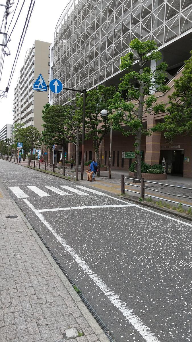 f:id:genta-san:20210511184552j:plain