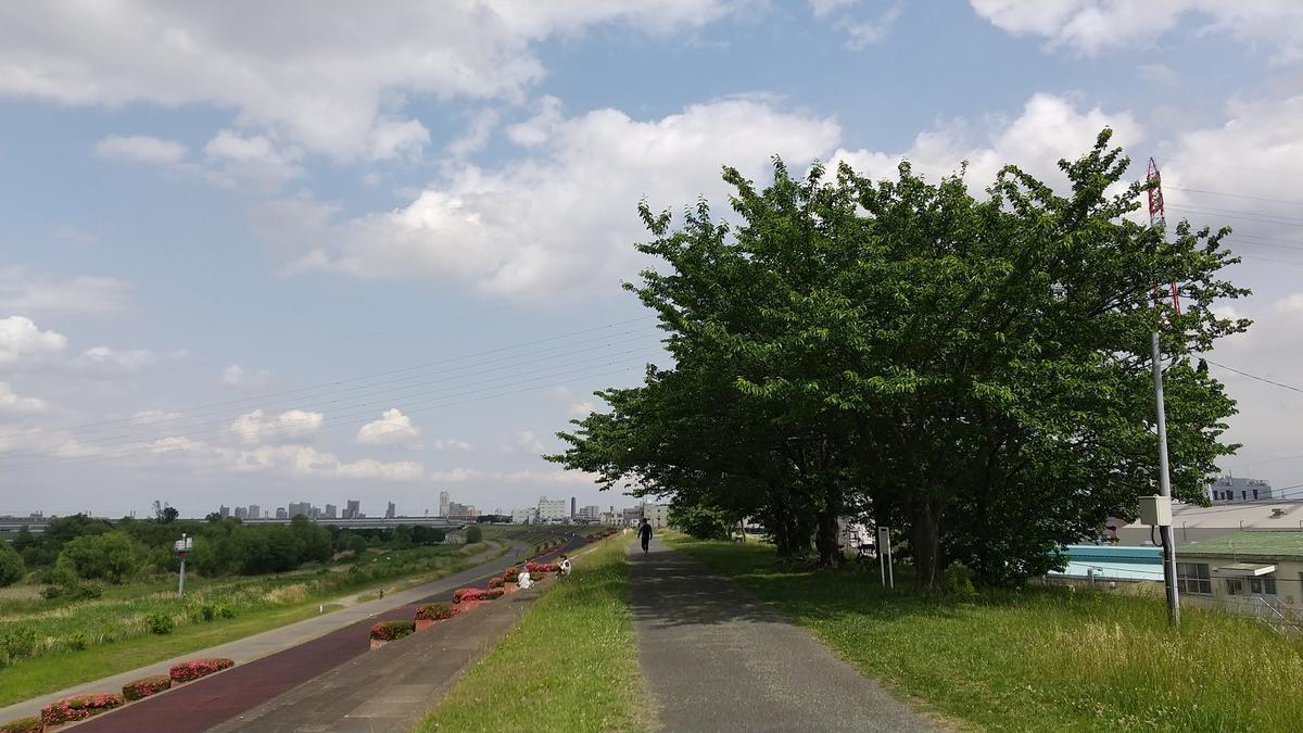 f:id:genta-san:20210515183803j:plain