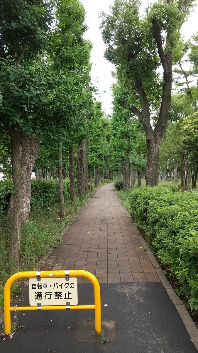 f:id:genta-san:20210522102803j:plain