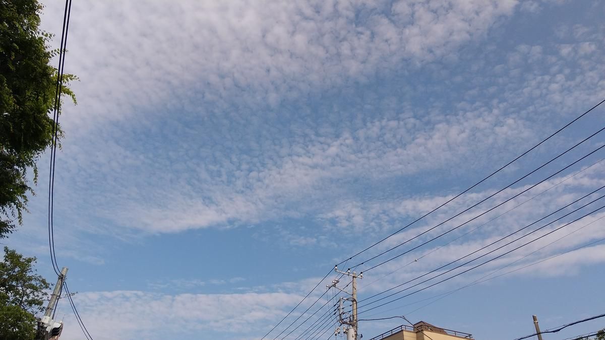 f:id:genta-san:20210525201411j:plain