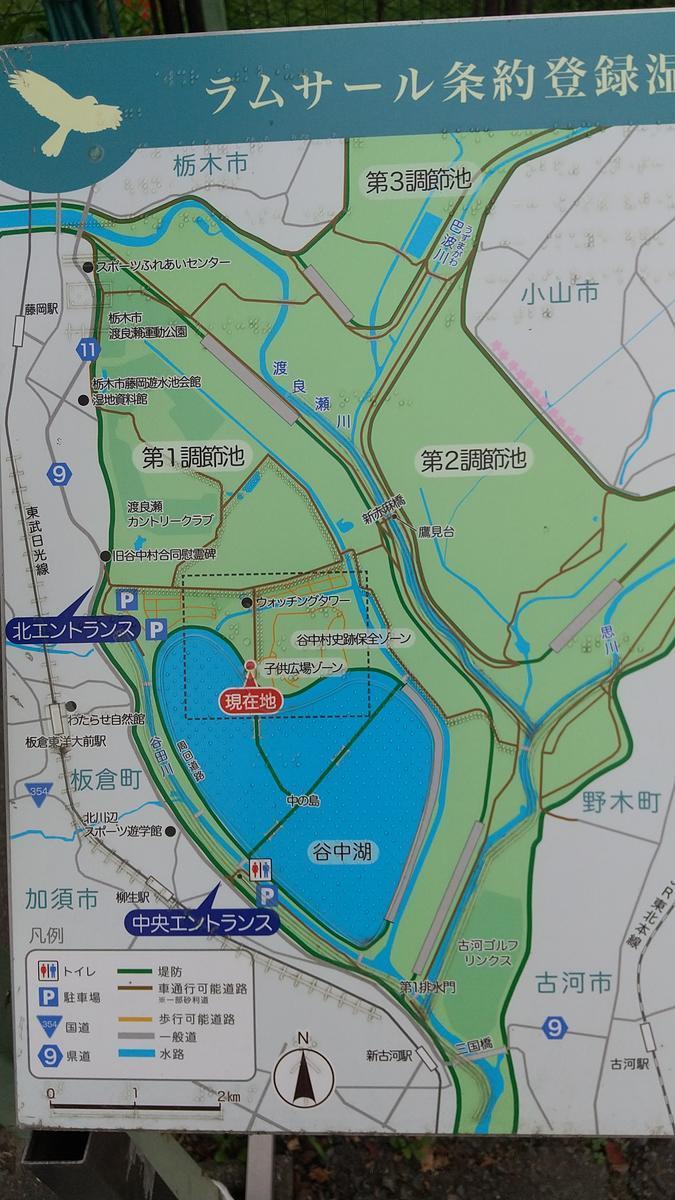 f:id:genta-san:20210605160009j:plain