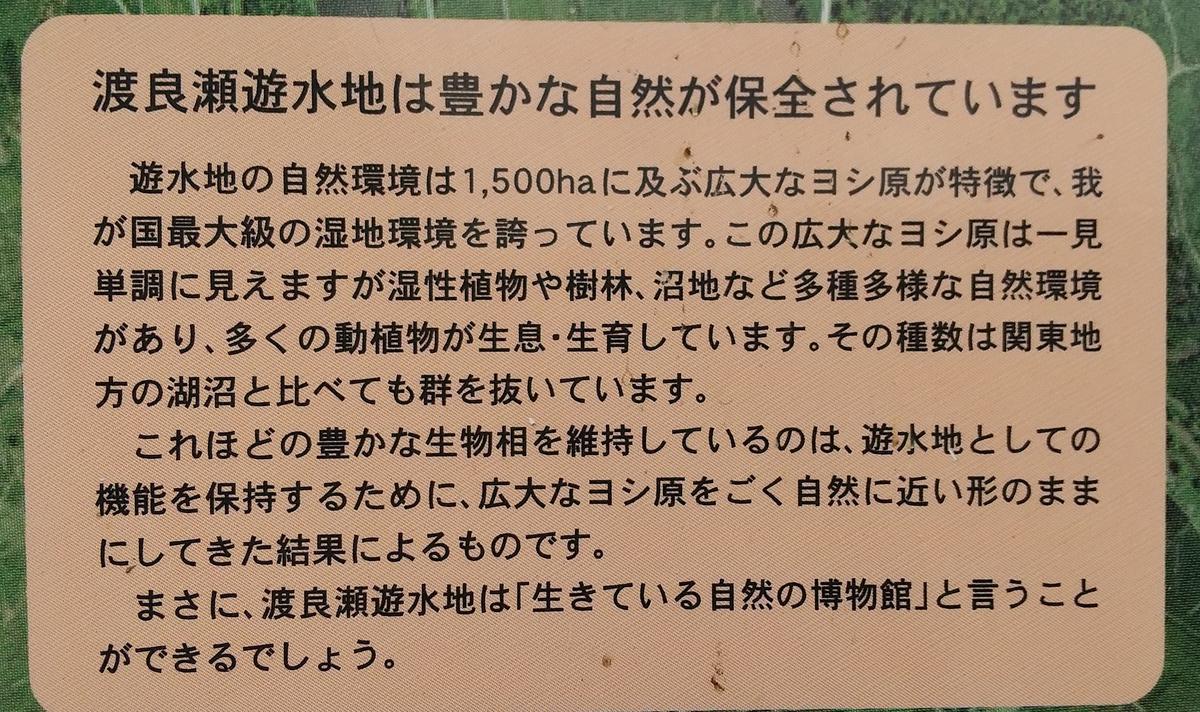 f:id:genta-san:20210605160324j:plain