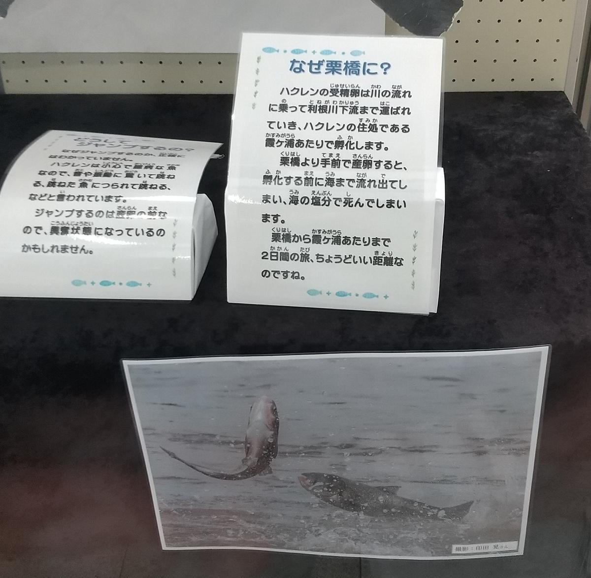 f:id:genta-san:20210605221902j:plain