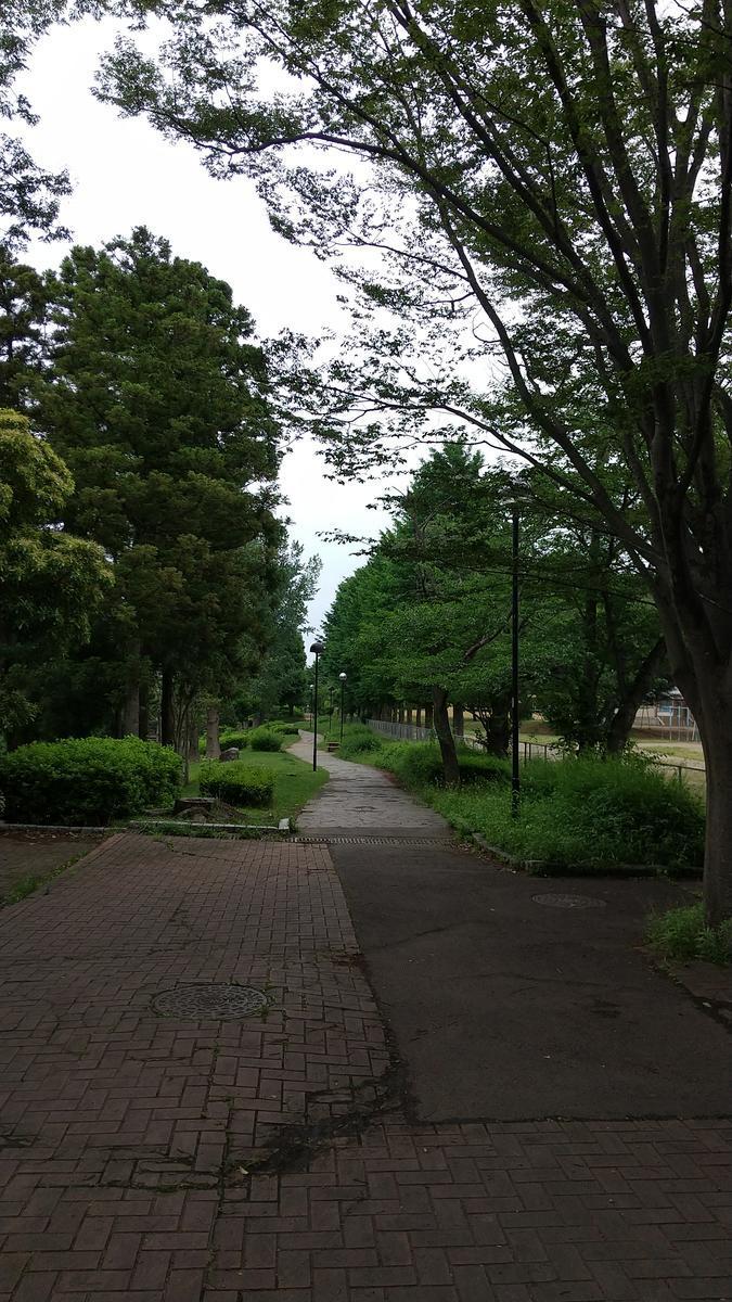 f:id:genta-san:20210607180956j:plain