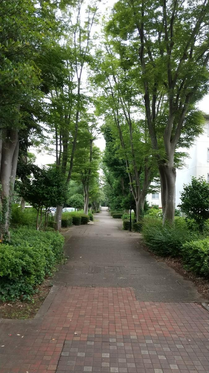 f:id:genta-san:20210607181251j:plain