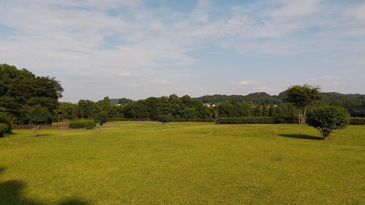 f:id:genta-san:20210612183235j:plain