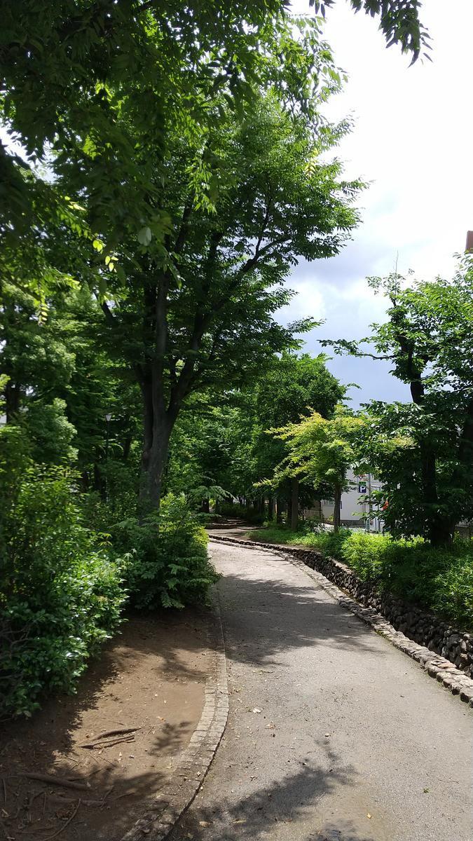 f:id:genta-san:20210617130455j:plain
