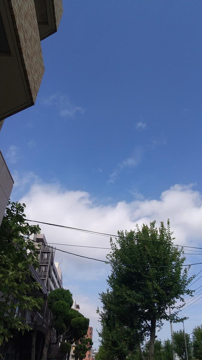 f:id:genta-san:20210728170158j:plain